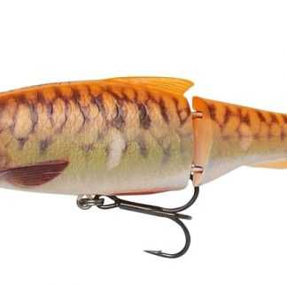 Savage Gear Wobler 3D Roach Lipster Gold Fish